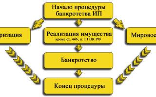 Банкротство ИП в 2017 году — пошаговая инструкция