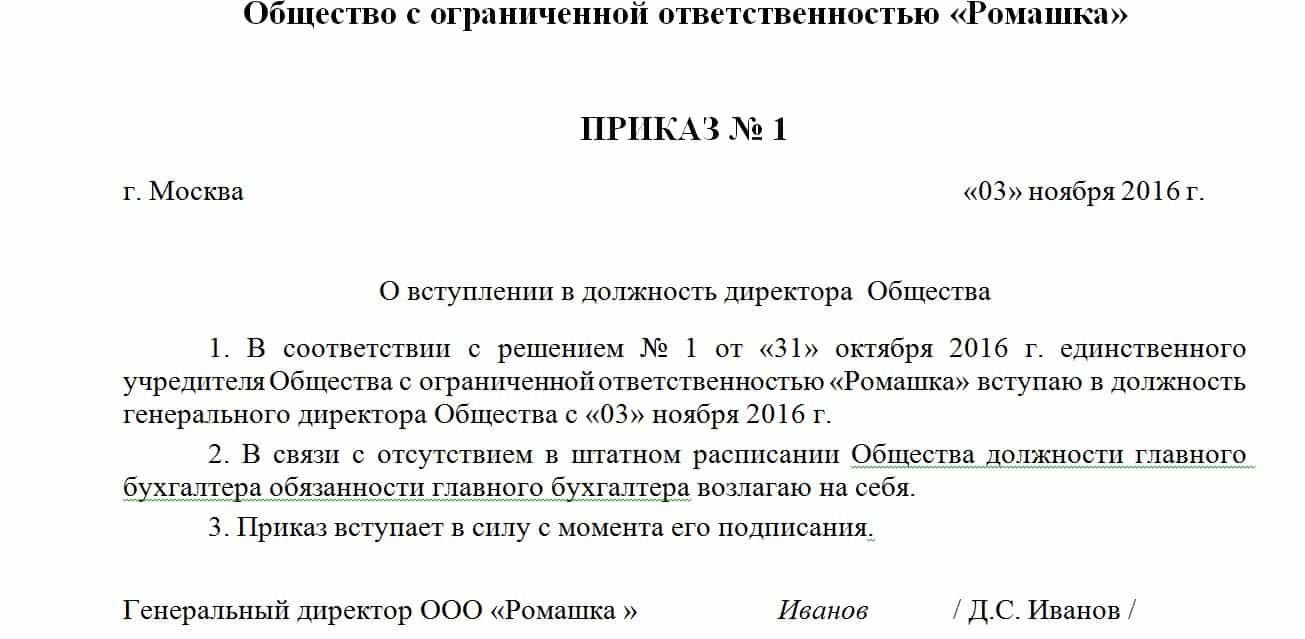 пошаговая инструкция смены директора ооо
